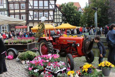 Herbst- und Bauernmarkt